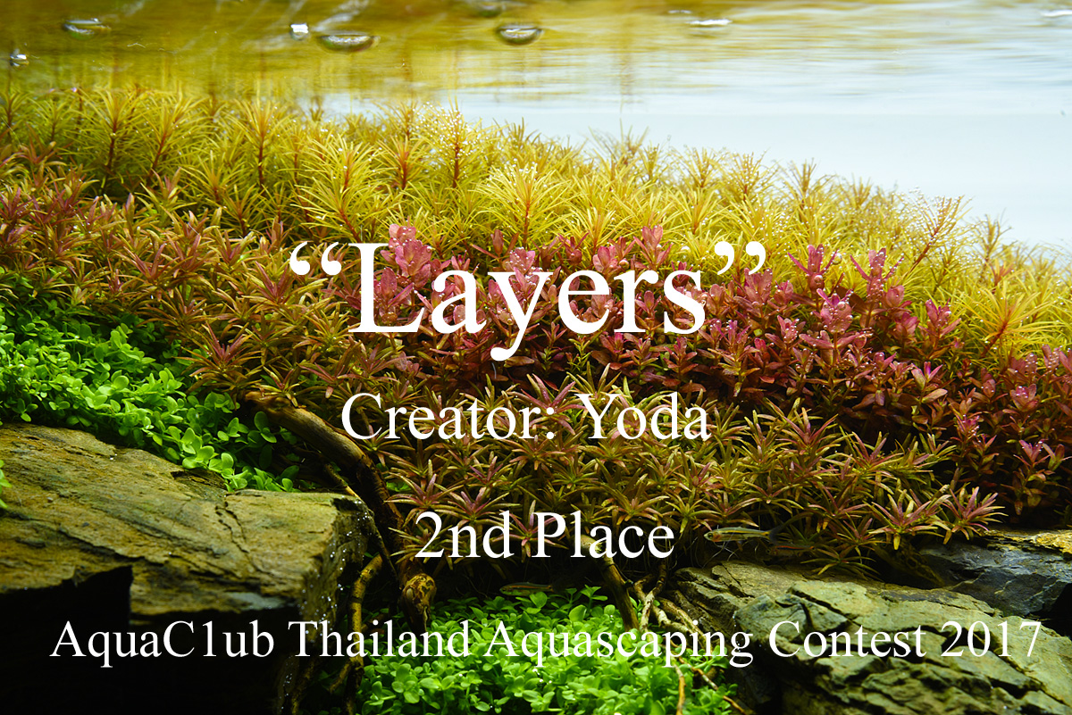 cover_layers2