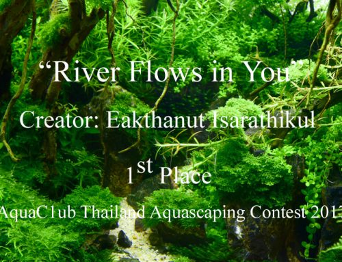 """River Flows in You"" by Eakthanut Isarathikul"